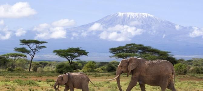 Kenia – Ein Land für Strandurlauber und Naturerkunder