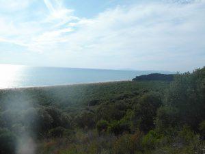 Nationalpark-Maremma-A4-Cala-di-Forno-01